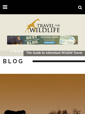 Itinerary Travel Blog screenshot_travel4wildlife.com.png