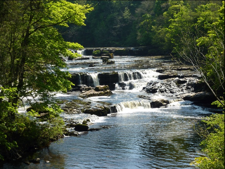 Picture of Aysgarth